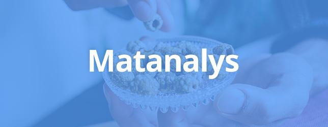 Matanalys lesscarbs