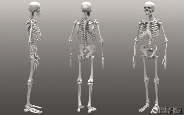 Läsarfråga: Har kroppen förmåga att laga ett urkalkat skelett?