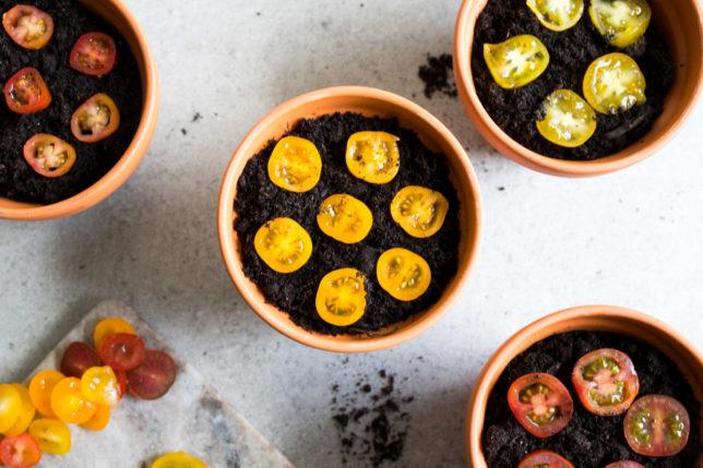Plantera tomatskivor – enkelt och roligt – del 1
