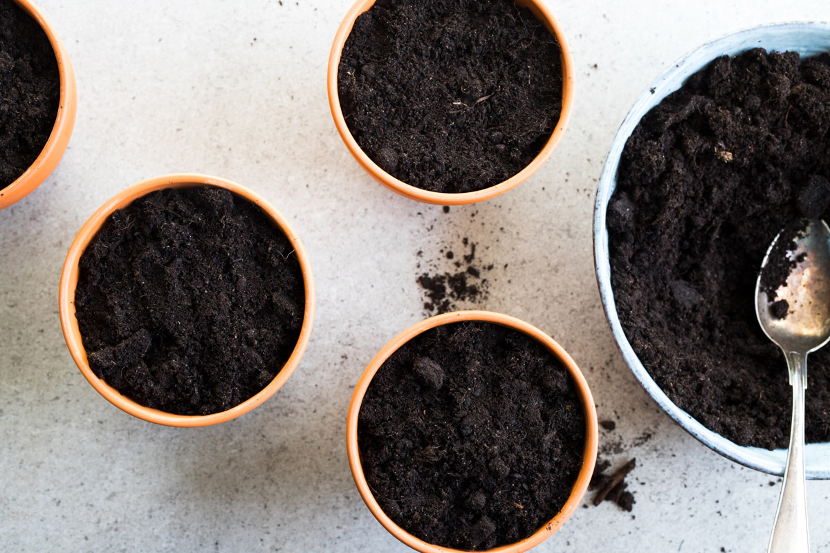 Plantera tomatskivor